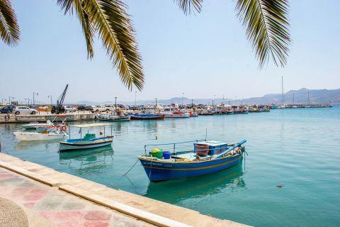 Sitia: At the port of Sitia.