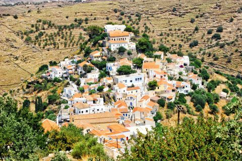 Ioulida: The houses of Ioulis, surrounded by vegetation