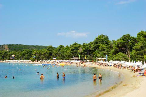 Koukounaries: A popular beach.