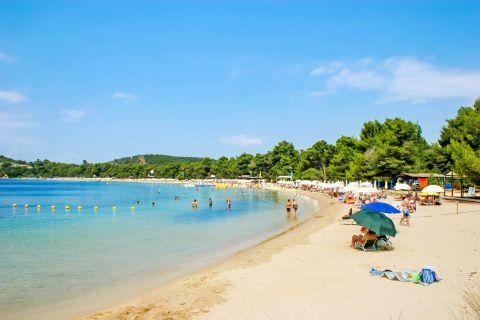 Koukounaries: Koukounaries is the most popular beach on Skiathos.