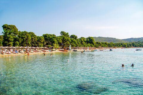 Koukounaries: Azure waters.