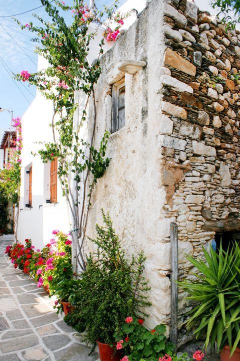 Prodromos: A stonebuilt house with flowers