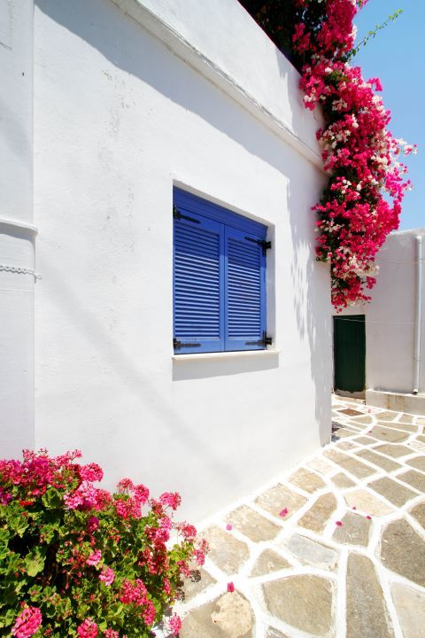 Prodromos: Blue-colored window and colorful flowers