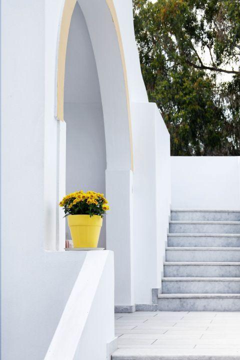 Halki: Whitewashed house with a flower pot