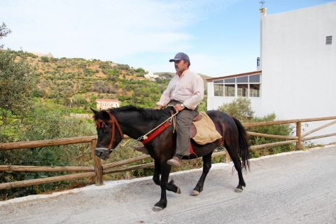 Melanes: A local with a donkey