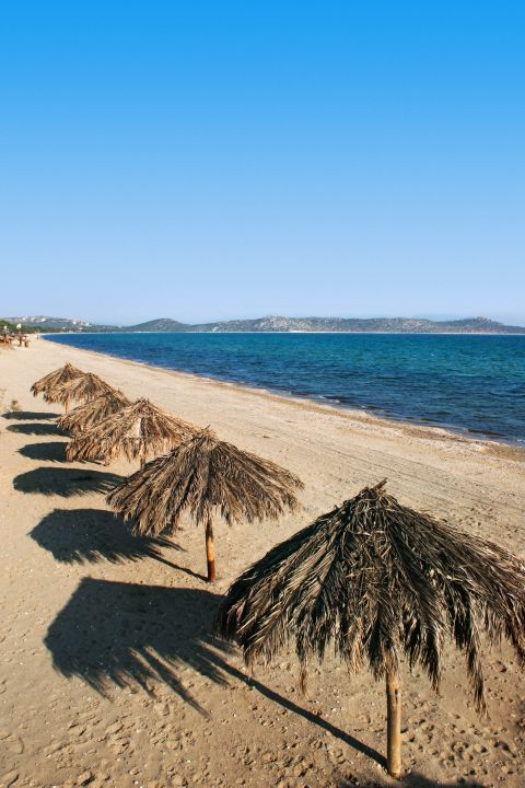 Schinias: Umbrellas in Schinias beach