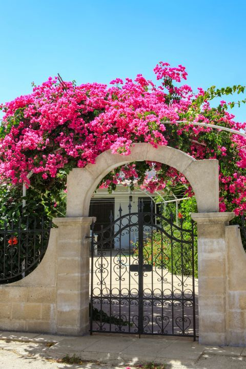 Ialissos Village: The beautiful gate of a local mansion. Colorful flowers create an enchanting scenery.
