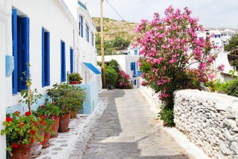 Katapola: A vintage Cycladic corner