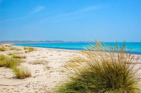 Keros: Green spots on the beach.