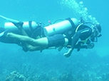 Scuba diving experience